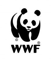 Master panda logo